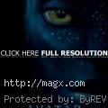 The Avatar Movie
